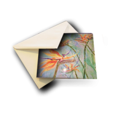Abstract Collection Note Cards