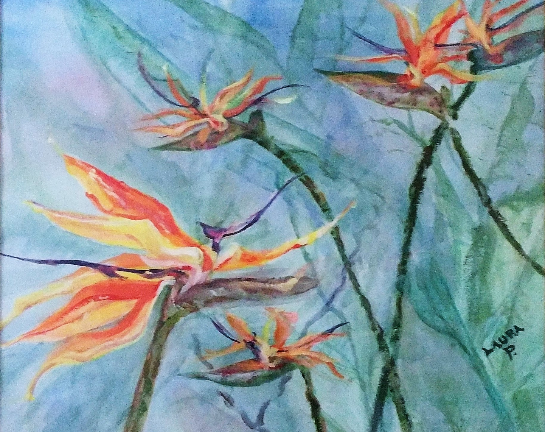Bird of Paradise Note Cards